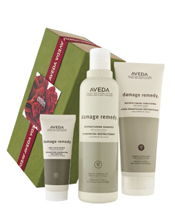 Aveda Natale Damage Remedy